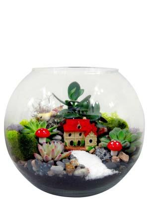 Teraryum Mini Bahçe
